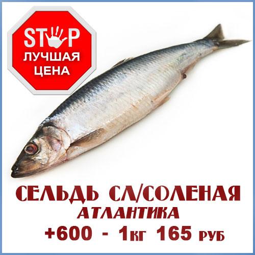 Продажа речной рыбы мелким оптом в нсо