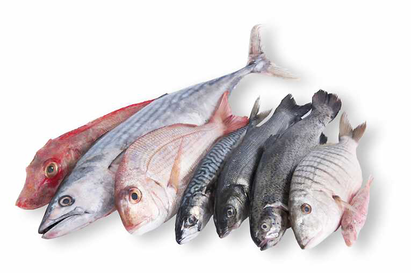 The complexity and sensitivity of the noble roe calls for a flawless harvesting and production process. The resources and production methods of our suppliers are therefore subject to evaluation and continuous monitoring. The sturgeon is a fragile and delicate fish which requires a lot of space per pool, as no obstacle should hinder its development. For optimal traceability, Pearls of Persia closely monitors all stages of production, from harvesting to egg selection and from breeding to consumption. A qualitative supply chain also guarantees compliance with environmental standards, hygiene and health requirements. From the production in refrigerated laboratories to final delivery, the cold chain is scrupulously maintained. Shipped within 24 hours, the black pearls are stored in isothermal packaging with ice packs.